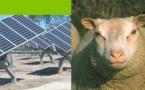 Plaidoyer en faveur du projet photovoltaïque d'Arsac