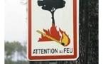 Protection de la forêt contre l'incendie: interdictions et conseils