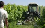 Le Vinopôle de Gironde devient Bordeaux-Aquitaine