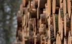 """La filière bois s'engage dans la """"décarbonation"""""""