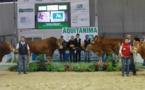 Aquitanima à Bordeaux:les résultats des concours