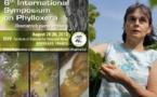 Rencontre internationale sur le phylloxera: l'ennemi de la vigne toujours sous surveillance