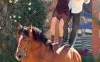 Le cheval dans tous ses états à Sainte-Foy-la-Grande le 22 septembre