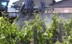 Une étude sur l'exposition des populations aux pesticides en zone viticole