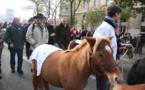 Equitaxe:la France cavalière veut envahir l'Europe le 23 décembre