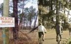 Le Parc Naturel régional des Landes de Gascogne renouvelé pour 12 ans