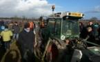Travaux d'hiver à la vigne:la mécanisation gagne du terrain