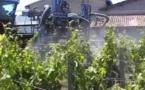 Traitements phytosanitaires:la chambre d'agriculture de la Gironde appelle au bon sens