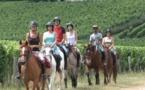 A la découverte des vignes et des châteaux du Saint-Emilionnais avec A Terre à Cheval