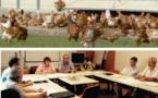 Sud Ouest Volailles et chambre d'agriculture de Lot-et-Garonne partenaires dans l'aviculture