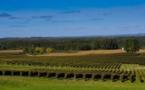 Les AOC Bordeaux,Graves et Sauternes tracent leur route