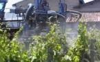 Plan Ecophyto2: les producteurs agricoles craignent un régime de la terreur