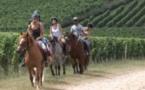 L'Equirando 2015 à Beaumont-de-Lomagne