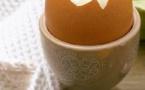 Un cri d'alarme des producteurs d'œufs