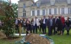 L'arbre des 70 ans de la Sécurité Sociale planté à Lormont (Gironde)
