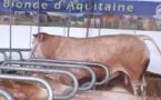 """Faut-il avoir peur de la viande """"rouge""""? Non selon la  Coordination Rurale"""