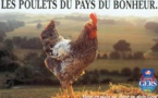 Le poulet du Gers va fêter ses 40 ans