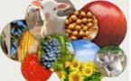 Le printemps prometteur d'Agri Sud-Ouest Innovation