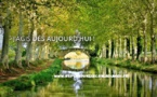 Sept artistes s'engagent en faveur de la replantation du canal du Midi